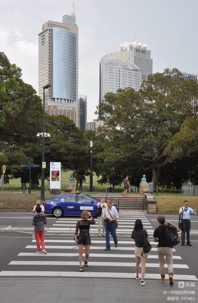 """《悉尼掠影—— """"公主游轮澳洲之旅""""全景回放之二》——一杯咖啡两块糖 - 826专列列车长 - 开往扎鲁特草原的826专列"""