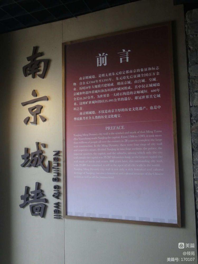 鸡鸣寺樱花,明城墙登高 - 筱苑 - 新安清欢(筱苑)