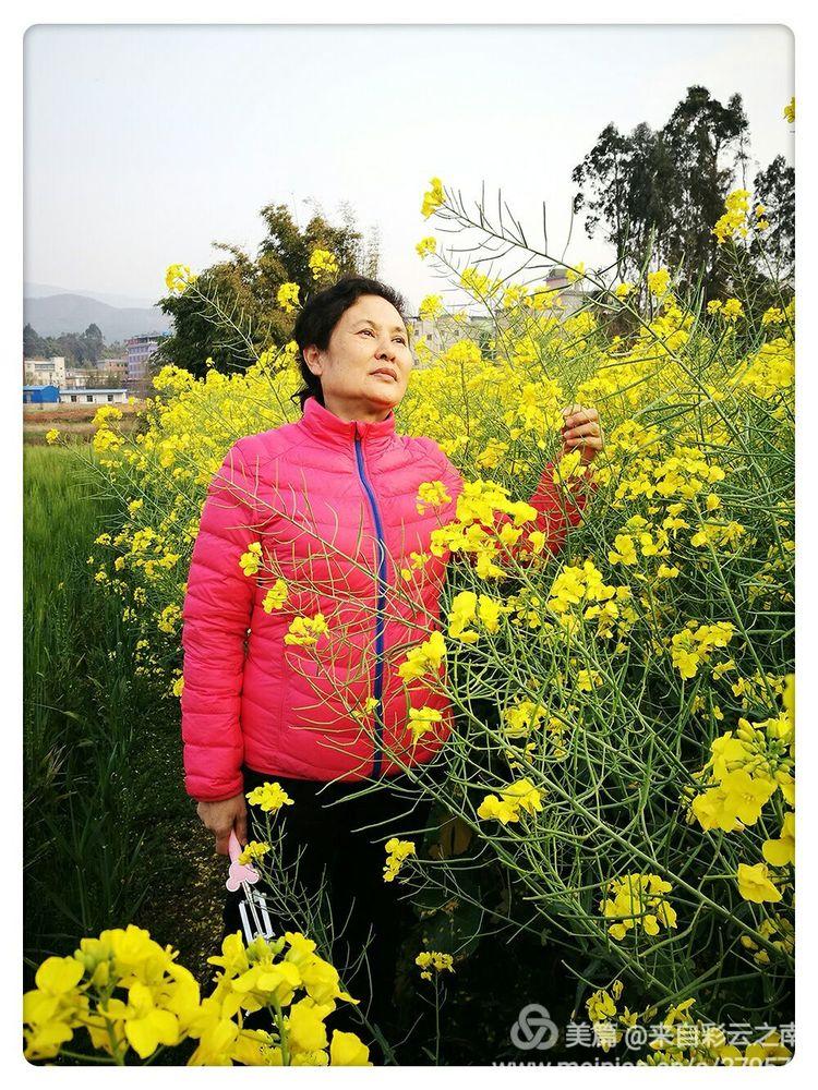 战友闺蜜云南罗茨田原游 - 来自彩云之南 - 来自彩云之南的博客