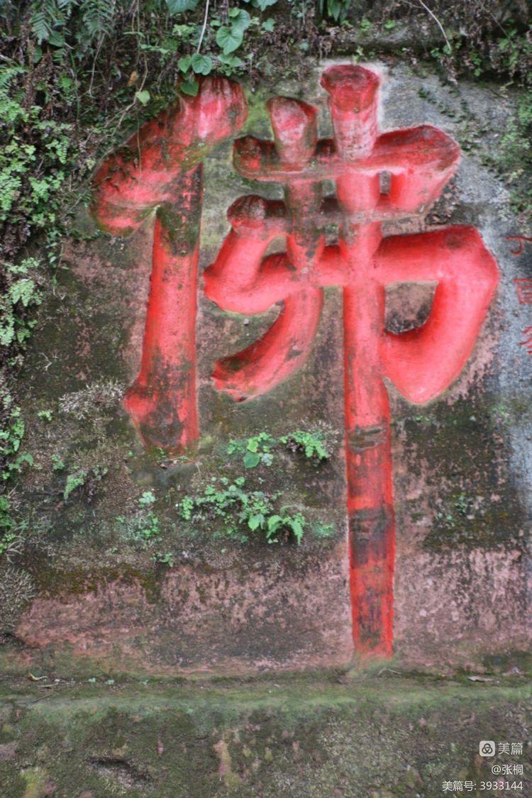 巴山蜀水自由行——(2)峨眉乐山游 - 闲庭信步 - 闲庭信步欢迎您