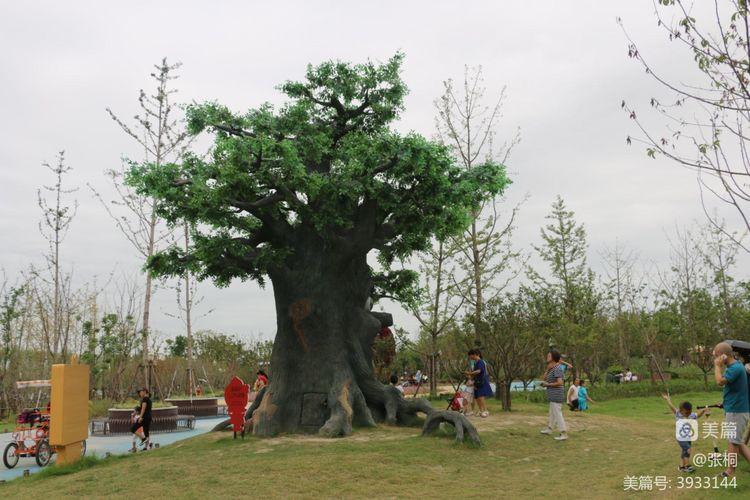浦江郊野公园·奇迹花园掠影 - 闲庭信步 - 闲庭信步欢迎您