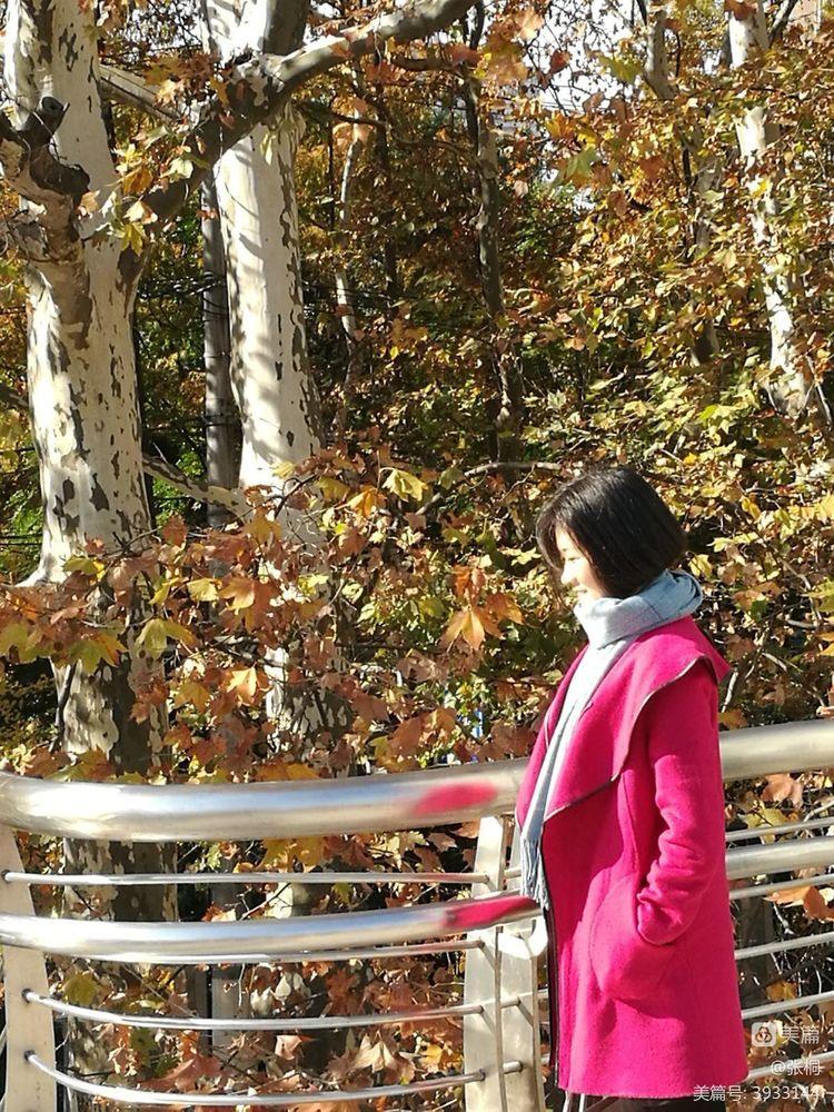 霜叶红于二月花 - 闲庭信步 - 闲庭信步欢迎您