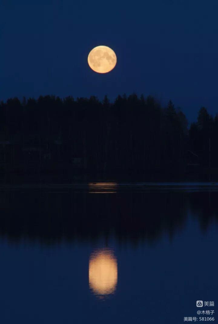 看月亮去(一轮) - 木头格子 - 下营街三十八号