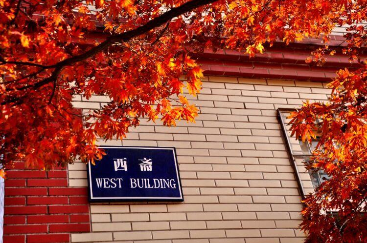 孩子们,九州娱乐官网登录网址校园这么美..