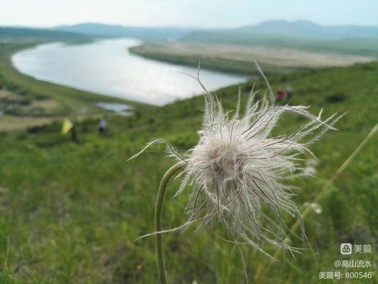 【原创】从莫尔道嘎一路行摄在中俄边境的额尔古纳河畔 - 秋香 - 方人雨